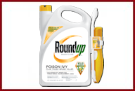 Roundup Poison Ivy