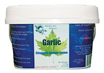 Herbs for Horses Garlic