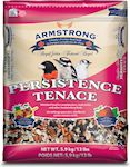 Armstrong Royal Jubilee - Persistence