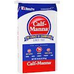 Calf-Mamma